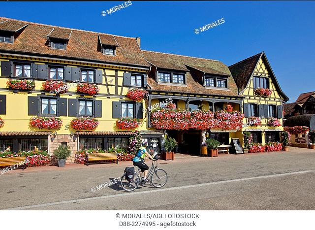 France,Alsace,Bas-Rhin (67),Wine Route,Itterswiller,facade of houses,Cyclists in front of the hotel restaurant Arnold,windows with flowers