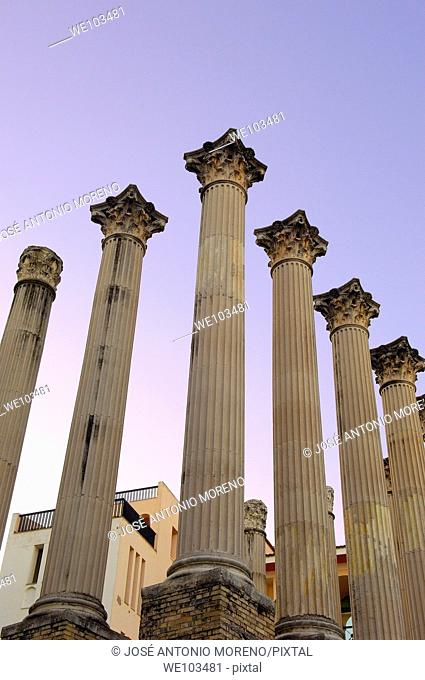 Columns of Roman temple, Cordoba, Andalusia, Spain