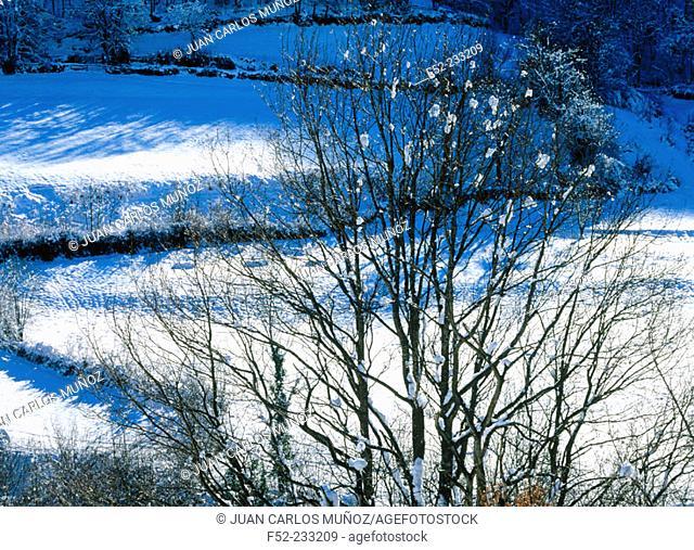 Winter scene in northern Spain