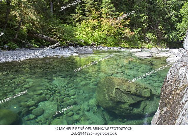 River in Hoh Olympic National Park outside of Seattle Washington