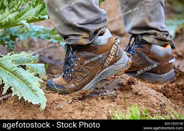 Farmer's boots, Farm field, Calahorra, La Rioja, Spain, Europe