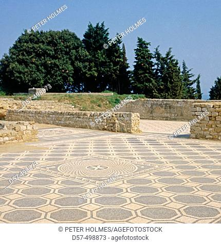Roman mosaic, Roman ruins of Ampurias. Girona province. Spain