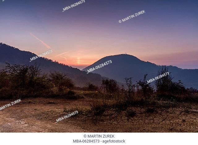 Volcanic landscape of the Euganean Hills at sunrise, Tialien, Veneto, Veneto