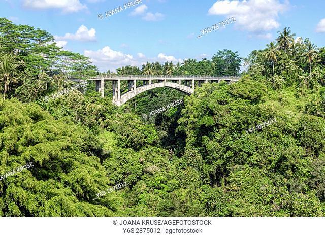 Tanah Wuk bridge, Sangeh, Abiansemal, Badung, Bali, Indonesia, Asia
