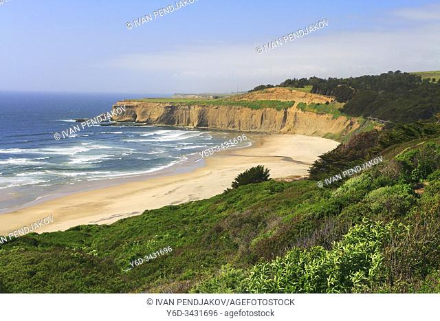 Pacific Coast, California, USA