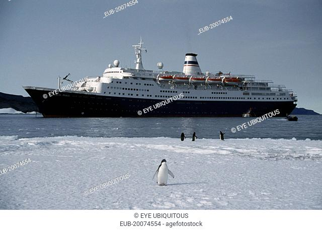 Tourist ship Marco Polo with Adelie penguins at Cape Royds