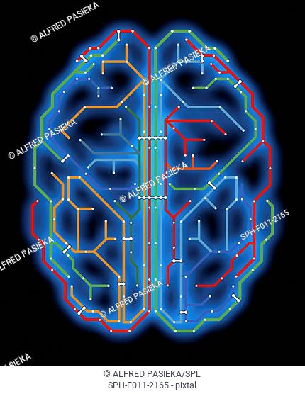 Computer artwork of a brain-shaped network of lines and connections