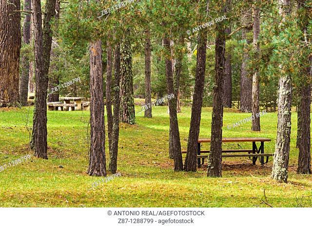 Recreational area. Checa, Parque Natural del Alto Tajo, Guadalajara province, Spain