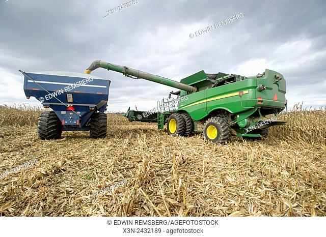 Combine harvesting corn in Jarrettsville, Maryland, USA