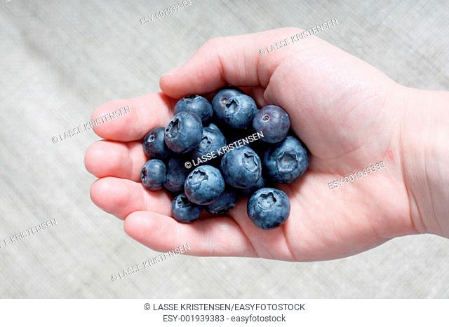 Delicious organic blueberries