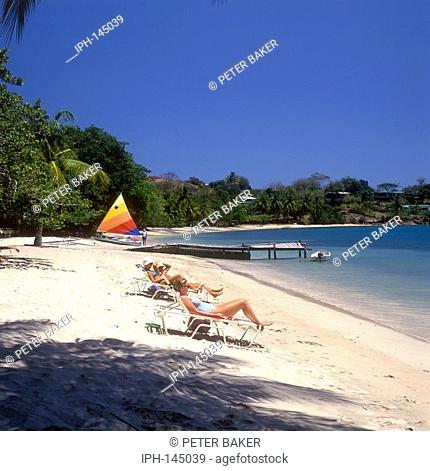 Grenada - Palm fringed beach on Prickly Bay near the Hotel Calabash