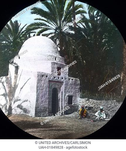 Algeria - Impression of an oasis with chapel. Carl Simon Archive, image date circa 1920