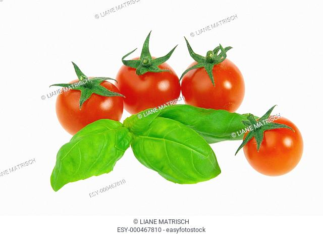 Tomate und Basilikum - tomato and basil 22