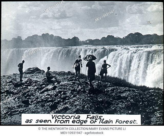 The Falls, Victoria Falls, The Zambezi River, near Livingstone, Zambia/Zimbabwe. View from the edge of the rainforest