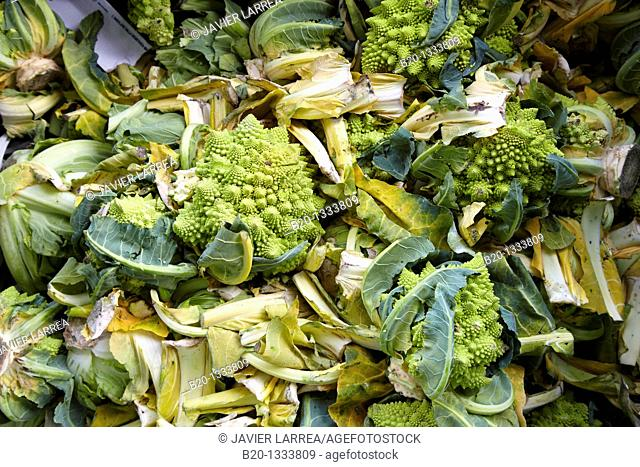 Unsold vegetable remains to be recycled, Mercabilbao fruits and vegetables wholesale market, Basauri, Bilbao, Bizkaia, Euskadi, Spain