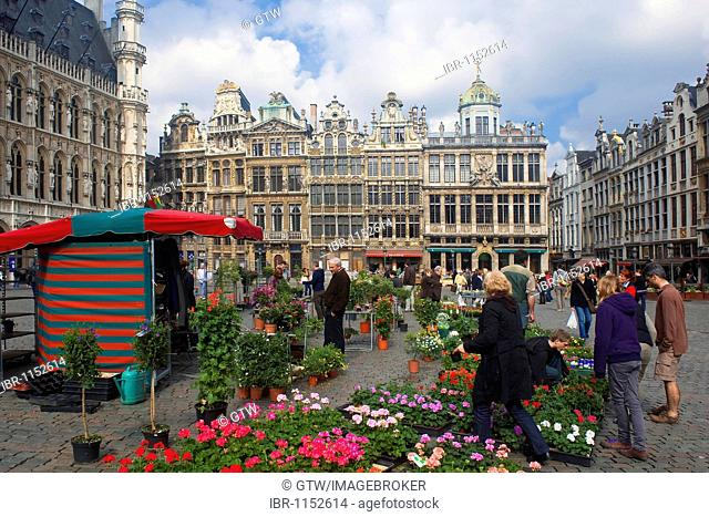 Houses of the guilds, Grand Place, Unesco World Heritage Site, Brussels, Brabant, Belgium, Europe