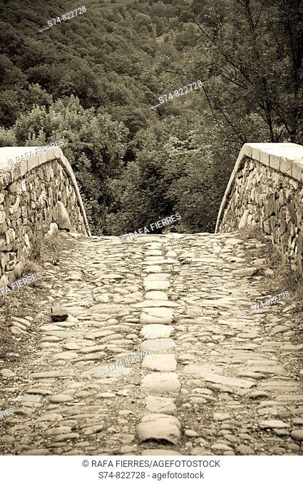 Roman bridge over the river Nalon, the Redes Natural Park, Asturias, Spain