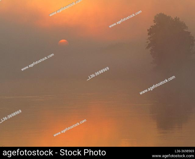 Poland. Podlasie region. Misty morning on river Bug near Wajkow village