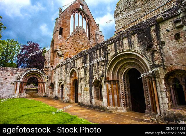 Dryburgh Abbey, Scottish Borders District, Scotland, United Kingdom, Europe