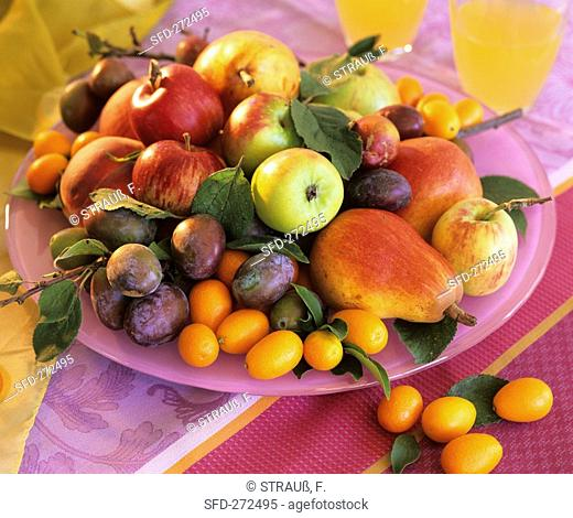 Apples, pears, plums and kumquats on plate