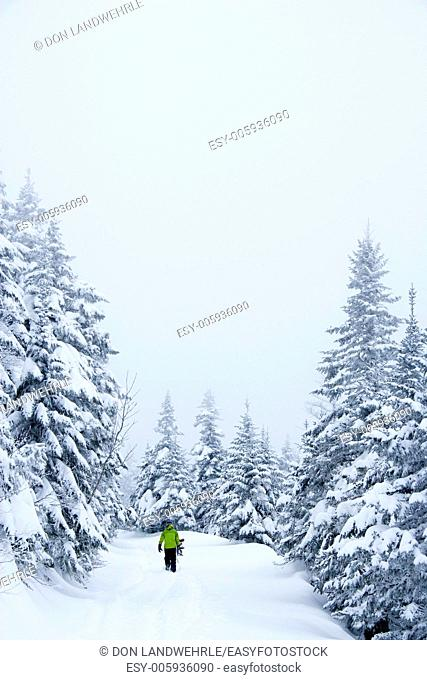 Snowboarder hiking a ski trail, Stowe, Vermont, USA