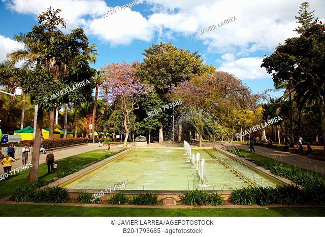 Parque García Sanabria, Santa Cruz de Tenerife, Tenerife, Canary Islands, Spain