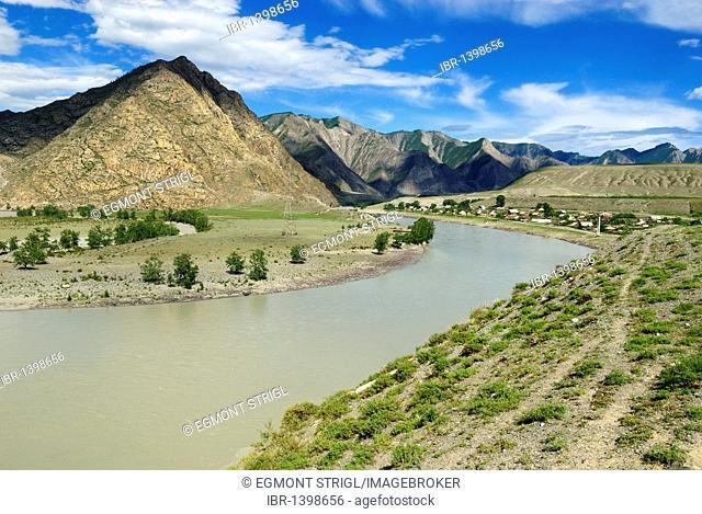 Siberian village on the banks of Katun River, Altai Republic, Siberia, Russia, Asia