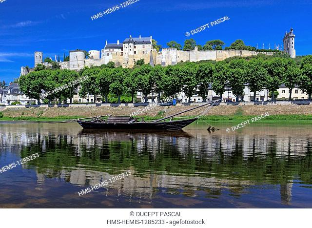 France, Indre et Loire, Loire Valley listed as World Heritage by UNESCO, the city of Chinon and its medieval castle