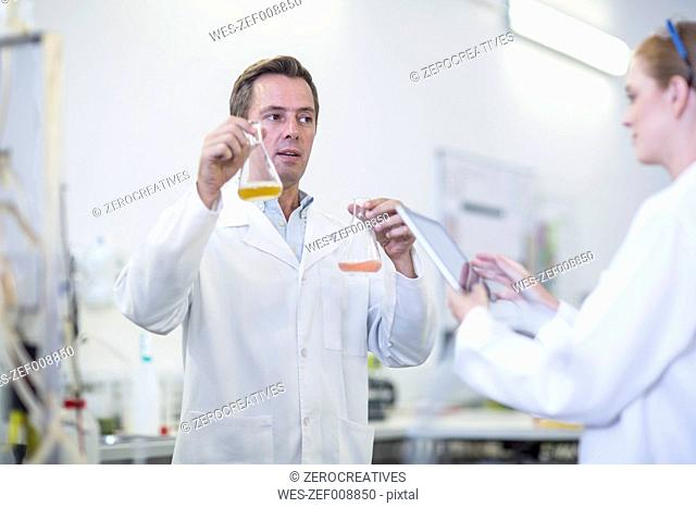 Two scientists with liquids and digital tablet in lab
