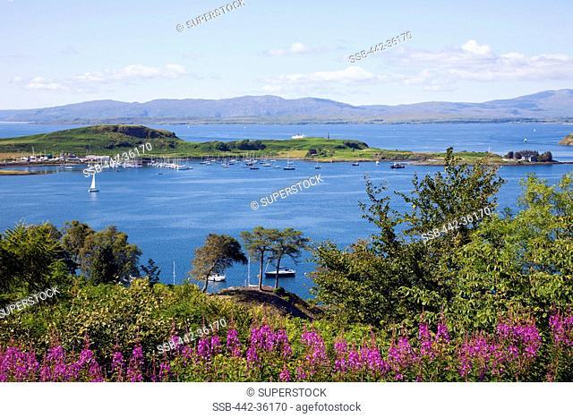 Island in the sea, Kerrera, Oban, Argyll, Scotland