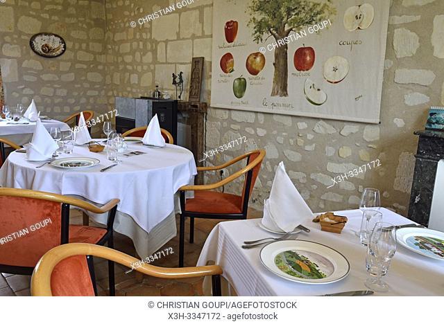 """restaurant Chez Vincent """"Cuisinier de Campagne"""", Manoir de La Galotiere a Ingrandes-de-Touraine, departement Indre-et-Loire, region Centre-Val de Loire, France"""