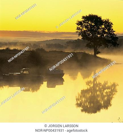 A tree and boats reflecting in the lake at sunrise