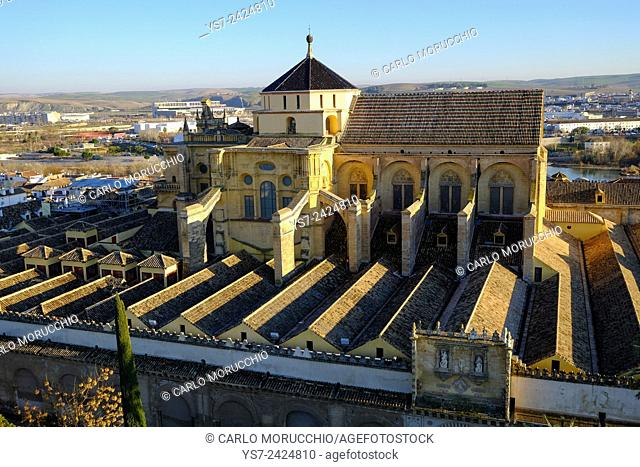 Patio de los Naranjos and the Mezquita Cathedral seen from its bell tower, Cordoba, Andalucia, Spain, Europe