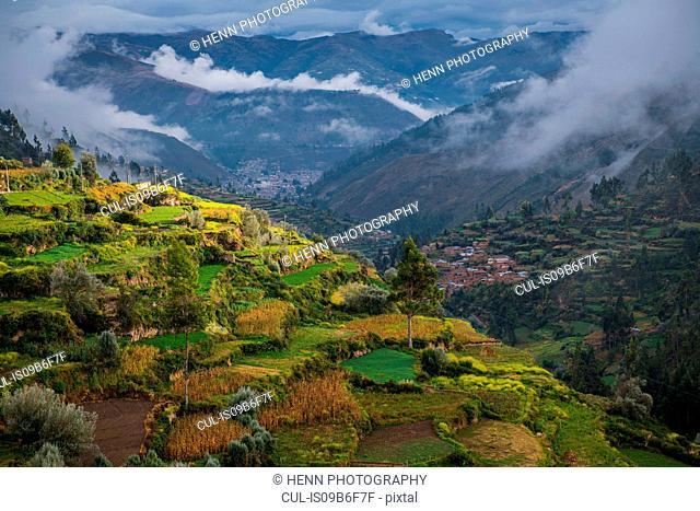 Agricultural terraces above Tarma, Junin, Peru, South America