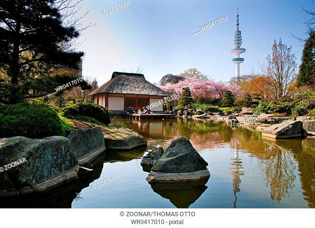 Hamburg, Germany, Japanese Garden with Teahouse