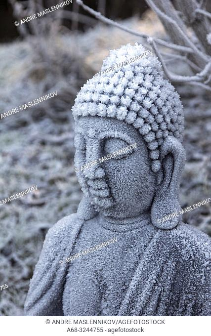 Sitting Buddha in frost