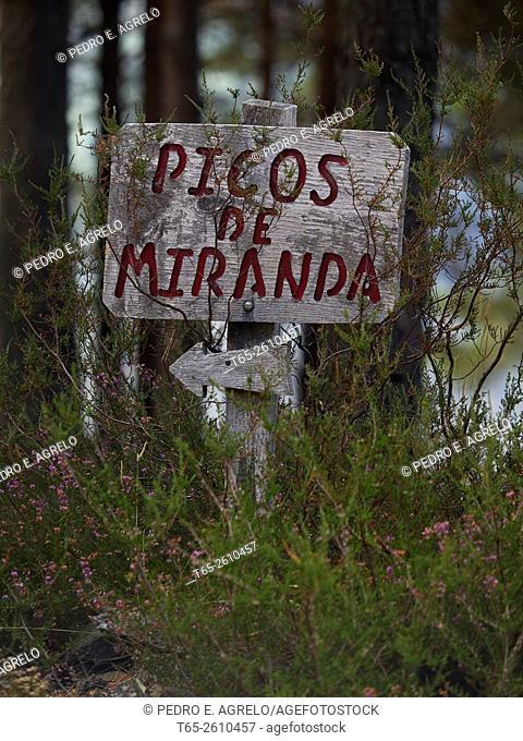 Sign in forest, Picos de Miranda, Province of Lugo, Galicia, Spain