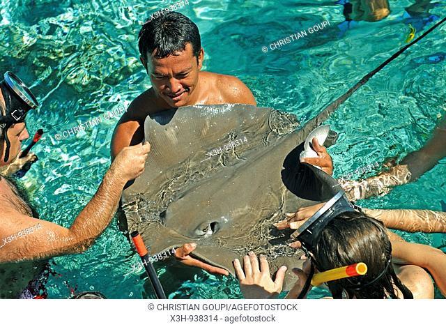 stingray,homme tenant une raie dans ses bras,Bora-Bora,iles de la Societe,archipel de la Polynesie francaise,ocean pacifique sud