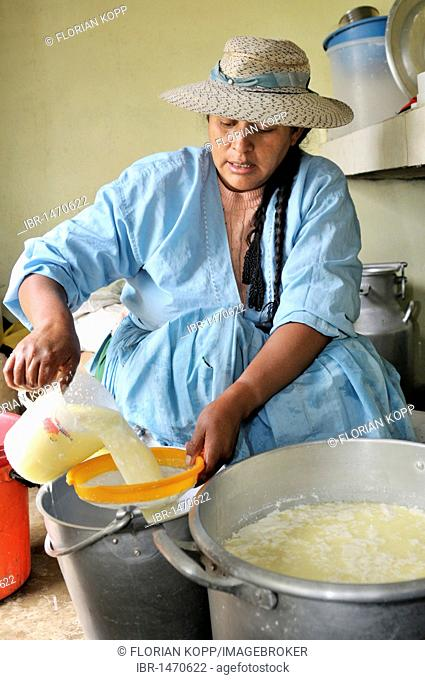 Woman in the production of fresh cheese in the Penas valley, skimming of the whey, Oruro Department, Bolivia, South America