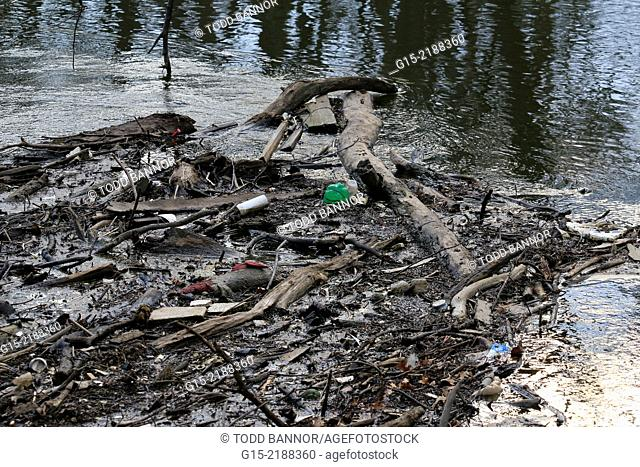 Debris and trash floating in the Des Plaines River. Thatcher Woods Forest Preserve. Cook County, Illinois