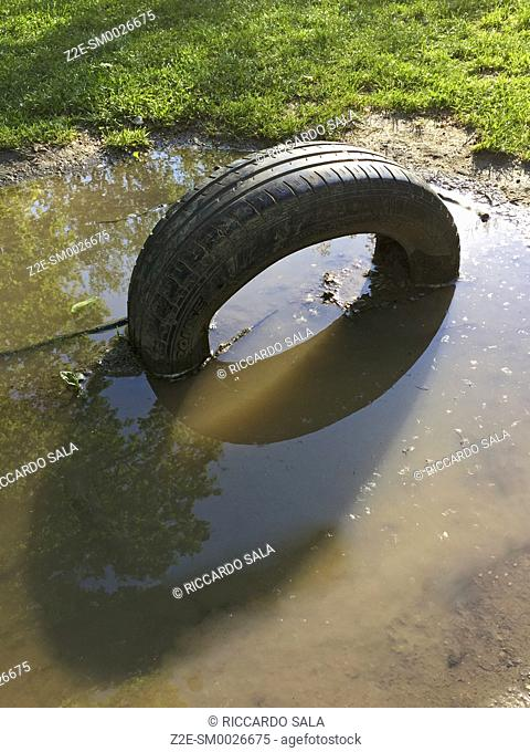 Abandoned Old Tire Laying in a Puddle. . .