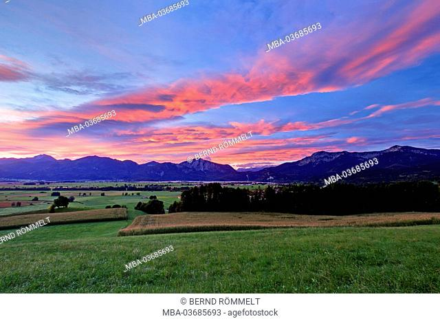 Germany, Bavaria, Upper Bavaria, Pfaffenwinkel, Blaues Land (region), Kochelmoos