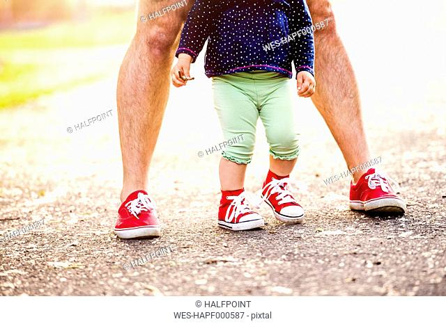 Legs of little girl and her father both wearing red sneakers