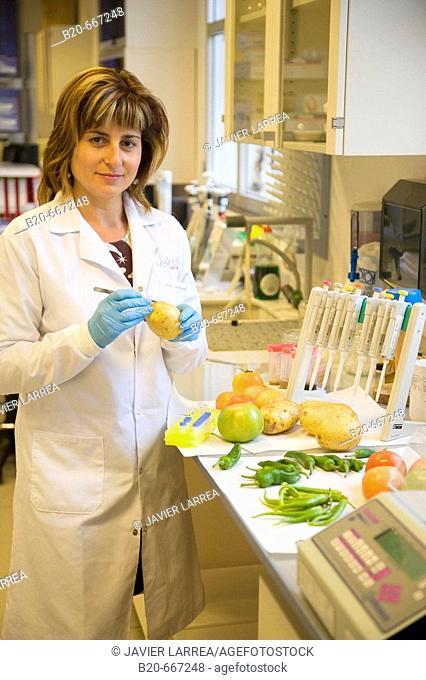 DNA extraction, Food and Polymerase Chain Reaction (PCR), Biotechnology Laboratory, Neiker Tecnalia, Instituto de Investigación y Desarrollo Agrario, Ganadero