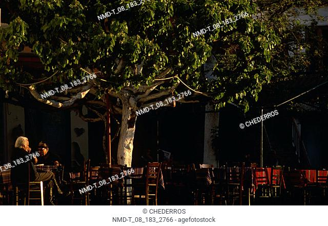 Two men sitting on chairs under a tree, Crete, Greece