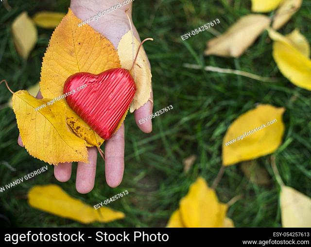 Hand holding Red wrapped heart and autumn leafs