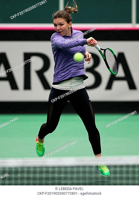 Romanian tennis player Simona Halep trains during a training session prior to the Fed Cup, World Group, 1st Round, match between Czech Republic and Romania