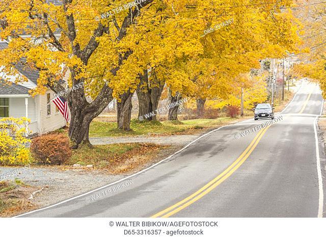 USA, Maine, Deer Isle, Sunset Road, autumn