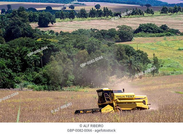 Harvest Soya, Bela Vista do Paraíso, Paraná, Brazil