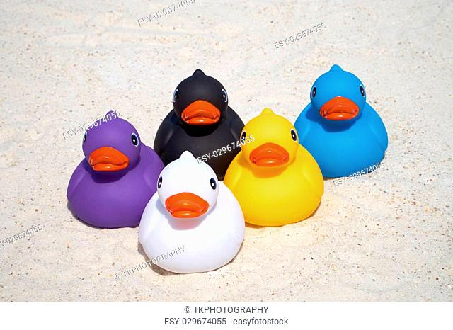 Five colorful rubber ducks on the summer beach